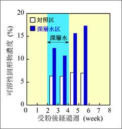 図6:トマト果実に集積する師管液中の溶質濃度の経時変化