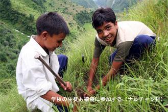植林に参加する生徒