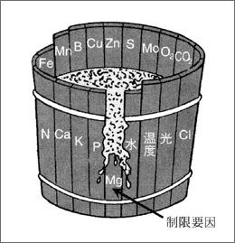 図3:最少養分律を説明するドベネックの要素